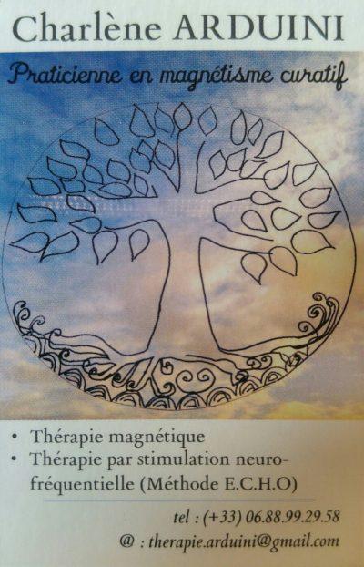 Magnétisme et Stimulation neuro-fréquentielle